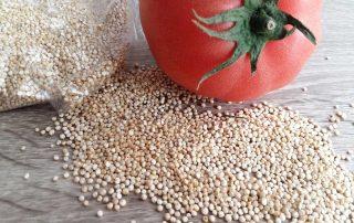 La quinoa. Propedades y beneficios nutricionales